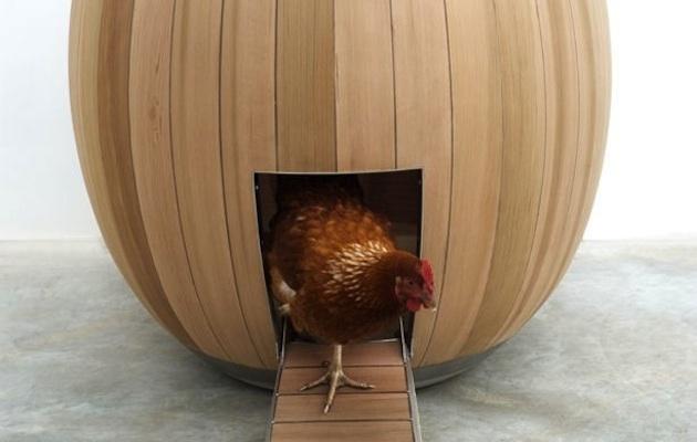 The nogg la casetta eco per galline donne sul web for Eco design per la casa
