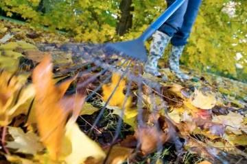 giardino-autunno1