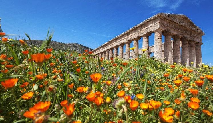 Risultati immagini per primavera siciliana