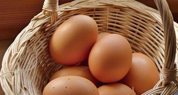 cestino uova