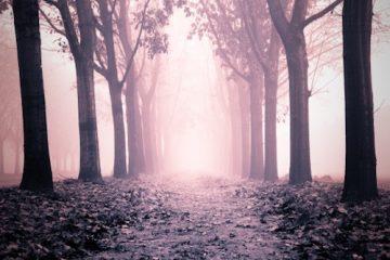 Torino autunno