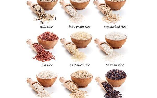 tipi di riso cucinare il riso