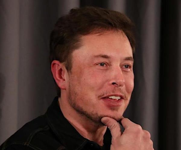 Elon Musk capelli