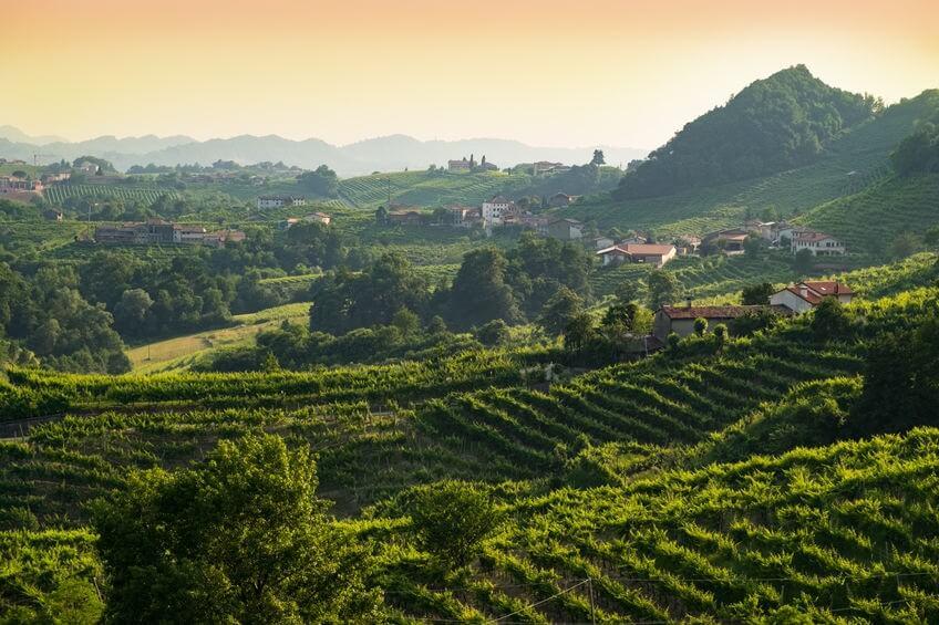Valdobbiadene colline prosecco Veneto