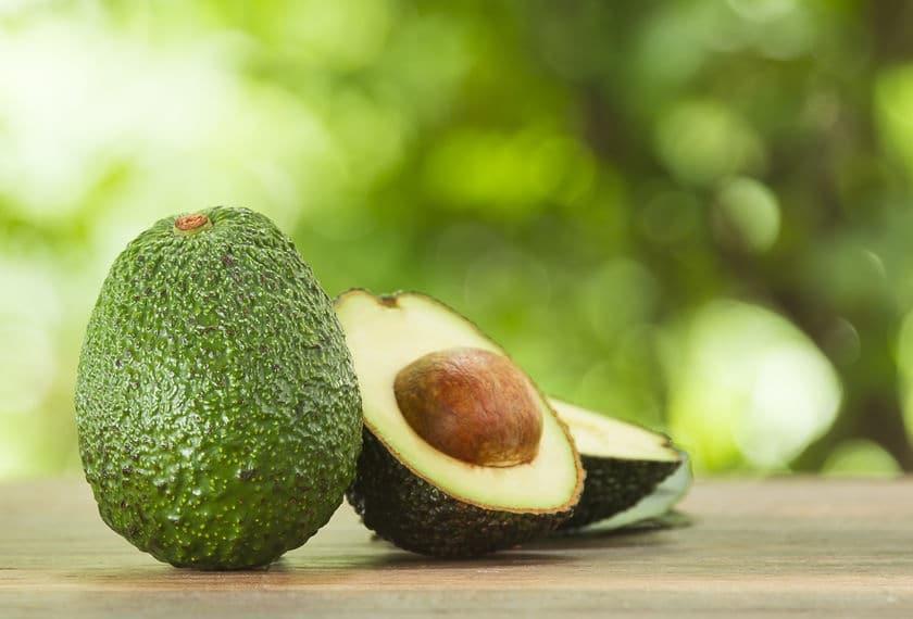avocado proprietà ricette