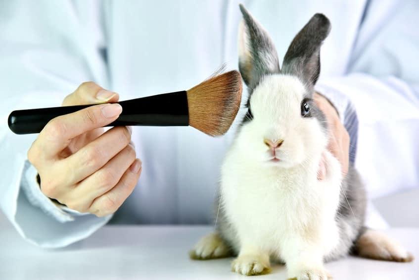 prodotti testati su animali 2021